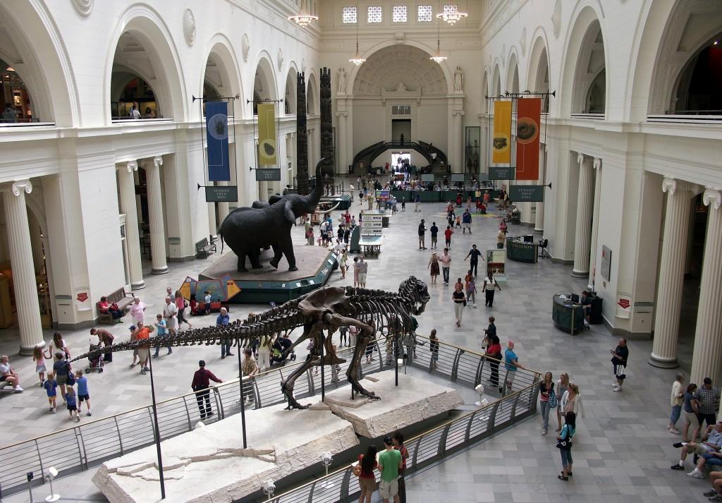 Field Museum interior - Wikimedia