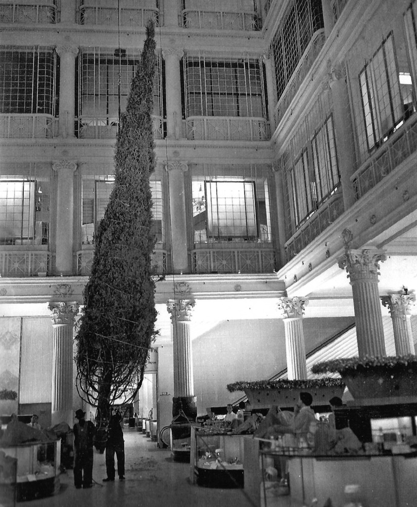 Bringing the tree in, 1961